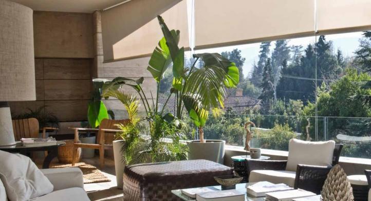 ¿Qué cortinas son las mejores para proteger tus plantas de interior?